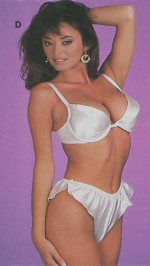 Ava Fabian lingerie catalogue 1980s