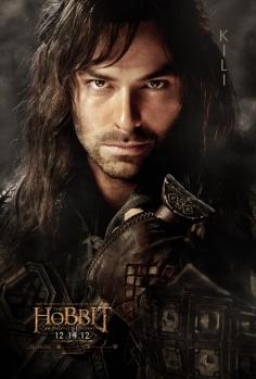 The Hobbit dwarfes poster-kili