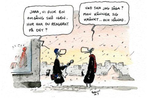 Kränkt - Berglins-2012-12-29_997508a_1