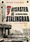 Peter Tsouras - Disaster at Stalingrad