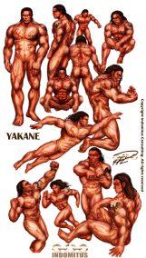 Yakane - Anatomisk studie färglagd & skuggad